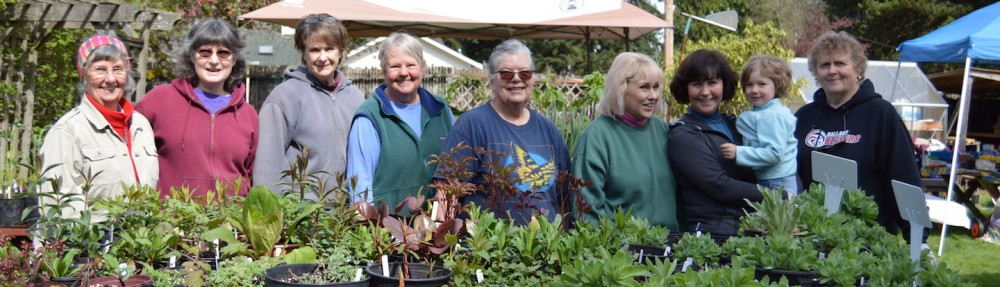 Lakeshore Garden Club
